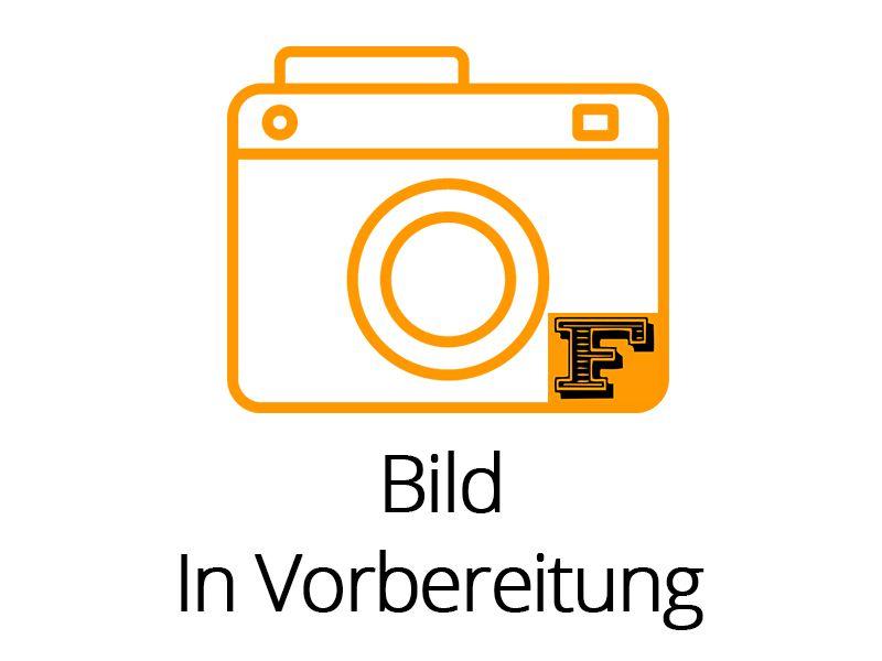 1x Lichtmodul Truck-Profi2.Steuerung für Blinker und 3 | Anlagen ...